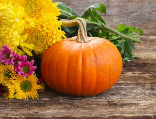 Rejuvenating Pumpkin Facial